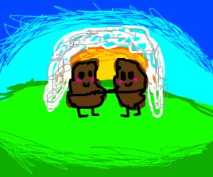turd wedding