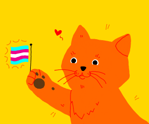 proud trans cat