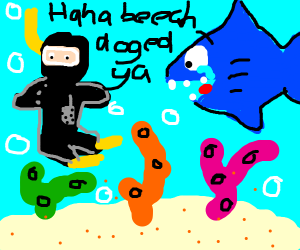 scuba diver dodging a shark