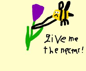 bee strangels flower