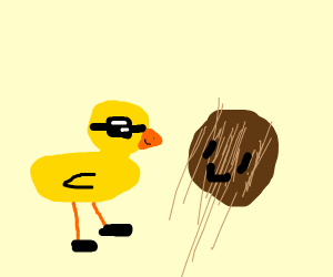 coconut and fancy duck