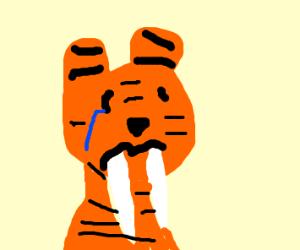 Sabretooth Tiger looking forlorn.