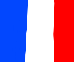 french flag?