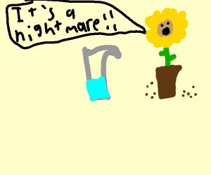 Pitcher plant nightmare