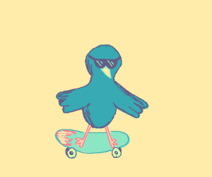 cool bird in skateboard