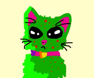 alien cat with chicken pox
