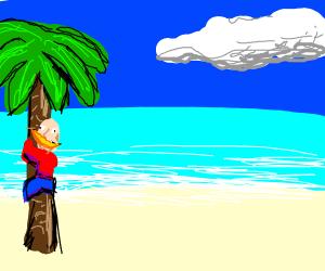 human with banana climbing palm