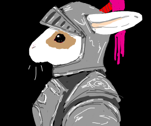 A rabbit knight