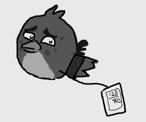 angry bird measures blood pressure