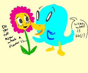 Bird discovering Flowers