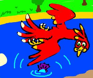 Scarlet bird soars over blue lake