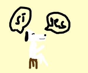 bilingual dog