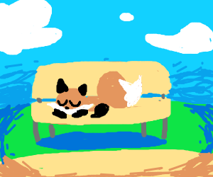 fox on a bench
