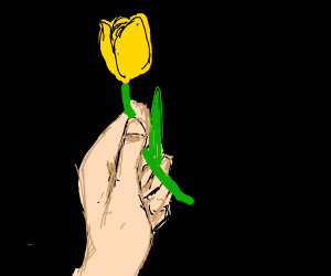Hand holding a tulip