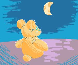 Teddy Bear looks at The Moon