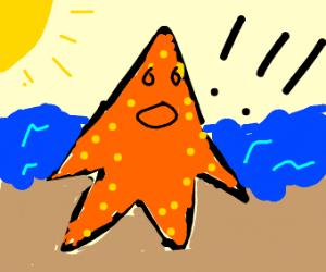 Surprised Starfish