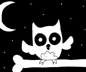 Bone & Owl
