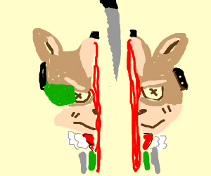Fox McCloud cut in half