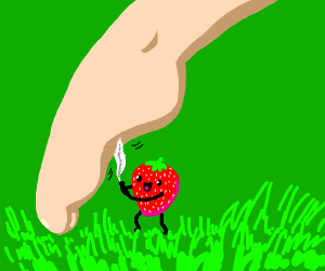 Strawberry tickling a foot