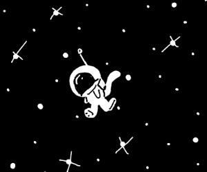 Monkey in space