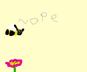 Bee dislikes honey