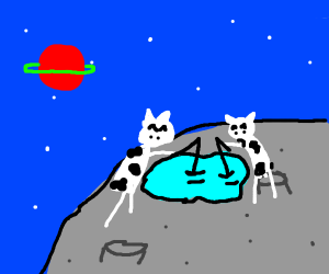 Fishing space cows on the moon