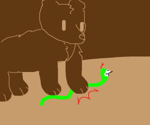 bear step on snake