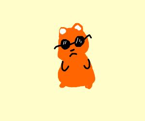 cool hamster