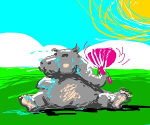 Sweaty hippo