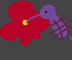 Hummingbird having a snack