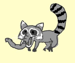 Mammoth Raccoon