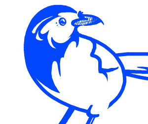 white and blue birb