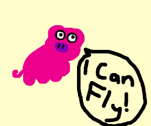 Fly-Pig