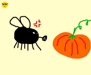 FLY VERY ANGERY TO PUMPKIN