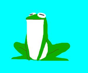 a gay frog