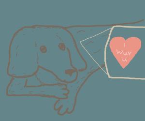 Close up of a doggo's heart