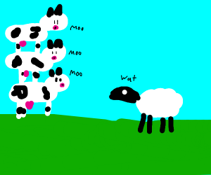 sheep questioning cow tower