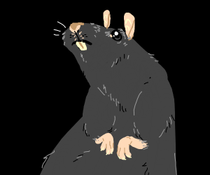 Rat...? (yikes)