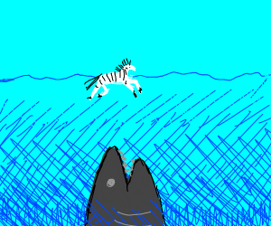 Swimming zebra