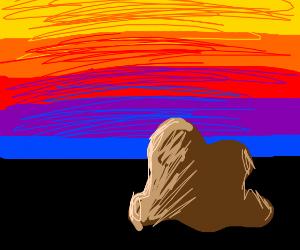 brown blob watches a sunset