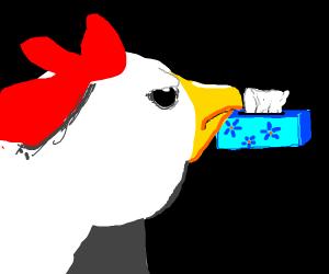 Tissue box angers chicken