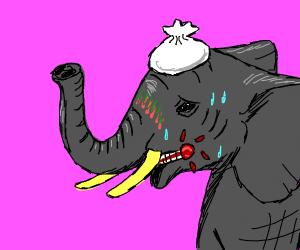 sick elephant :(