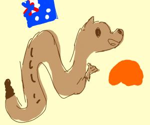 snake kangaroo