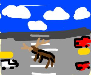 reindeer crossing the road
