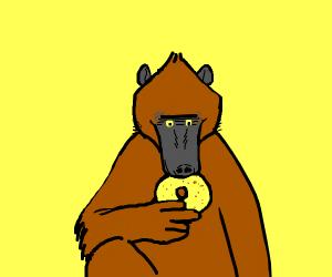 Baboon Eats a Bagel