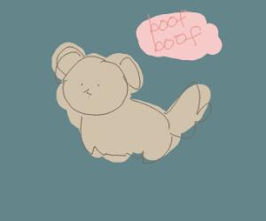 A cute dog :D