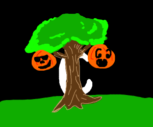 Moon behind haunted tree with pumpkins on it