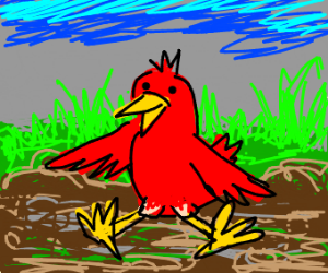 red bird sitting on the mud
