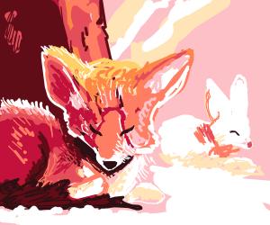 fox sleeping next to a bunny
