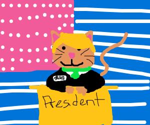 cat is best president, he protecc america